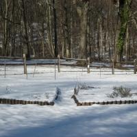 dogwoodfarm_2010_winter