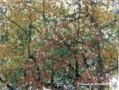 falltrees1