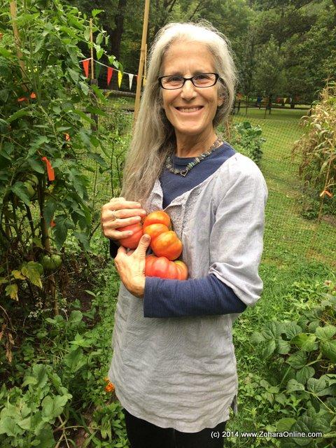 Welcome to Dogwood Farm\'s 2014 Organic Garden – Zohara Hieronimus