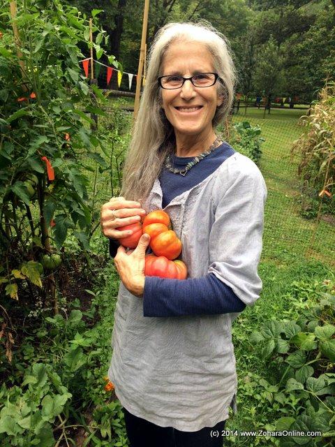 Welcome to Dogwood Farm's 2014 Organic Garden