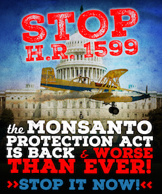 Stop Monsanto's secret plan to Kill GMO Labeling!