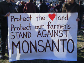 Supreme Court Sides With 'Notorious Patent Bully Monsanto'