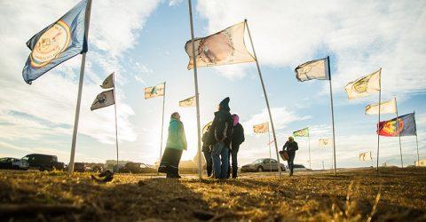 flags_lucas zhao 800